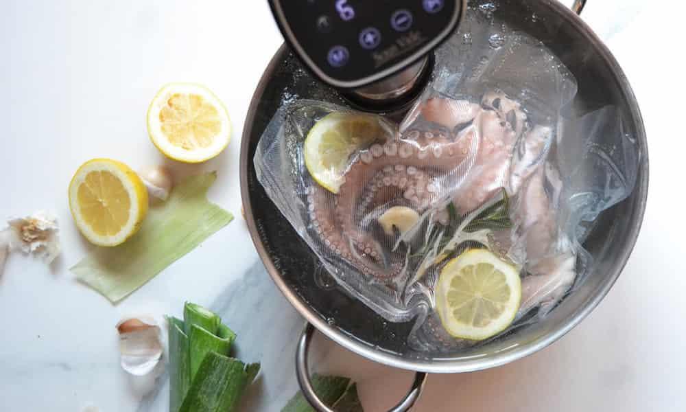 Termocircolatore ad immersione per  cottura degli alimenti sottovuoto a bassa temperatura